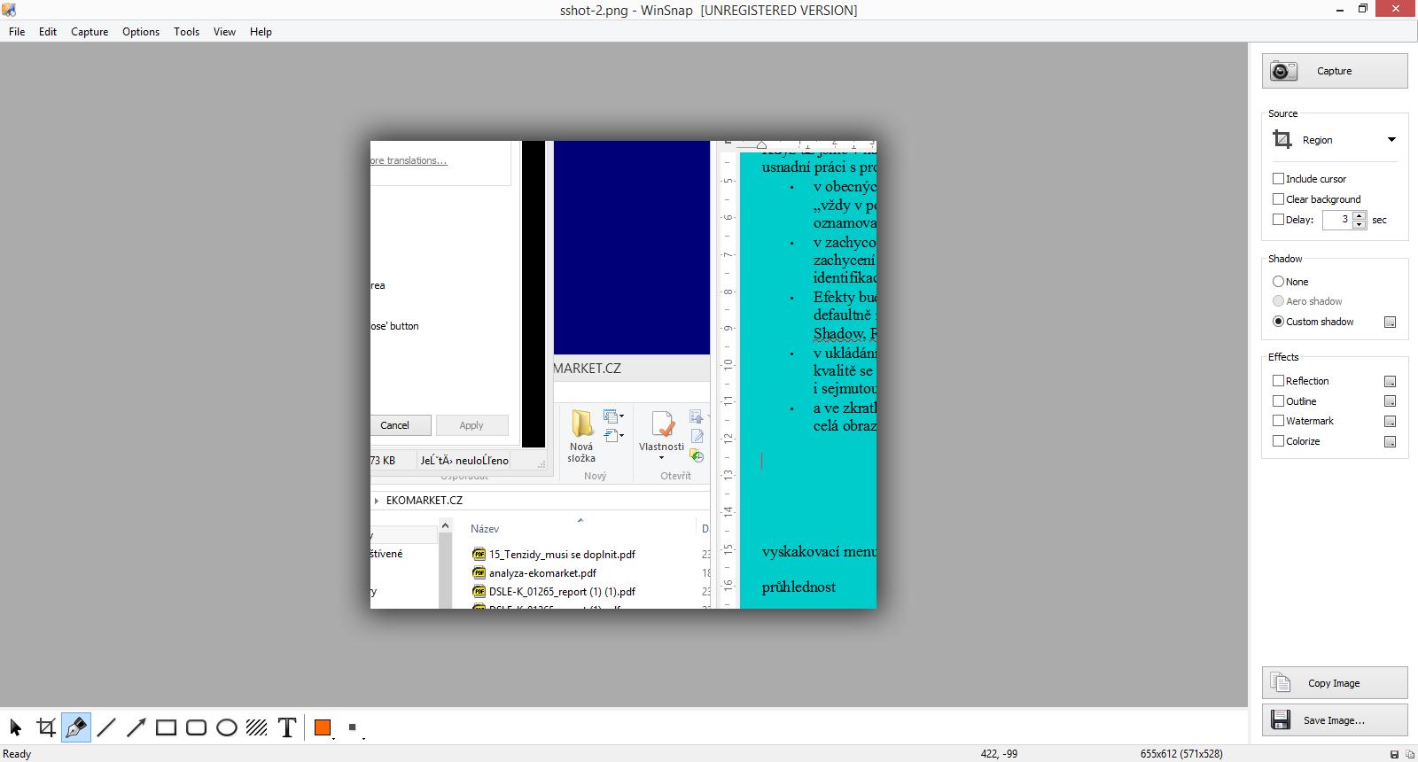 Zachycený snímek - vpravo menu screenshotu - dole editační menu