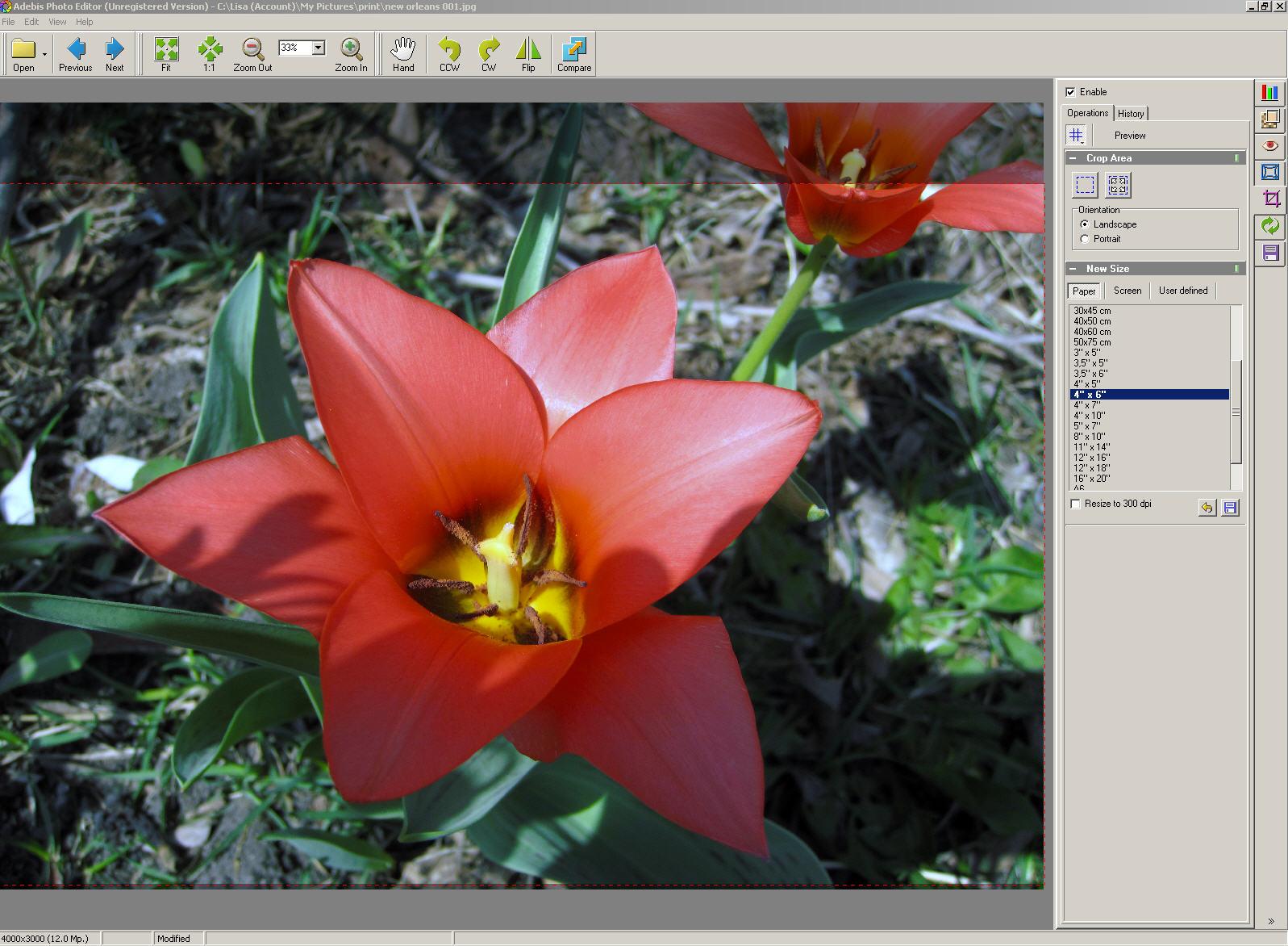 Adebis Photo Editor - nástroj pro úpravu fotografií