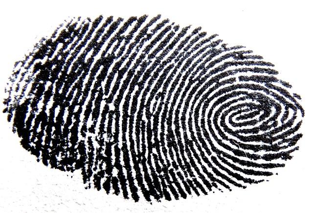 Snímání otisku se netýká jen prstů, ale i způsobů interakce uživatele s počítačem (Zdroj: Pixabay.com)