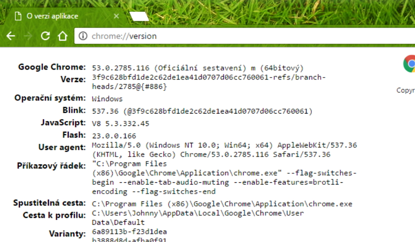 Verze prohlížeče včetně informací o vykreslovacím jádře, operačním systému, verzi JavaScriptu, Flashe...