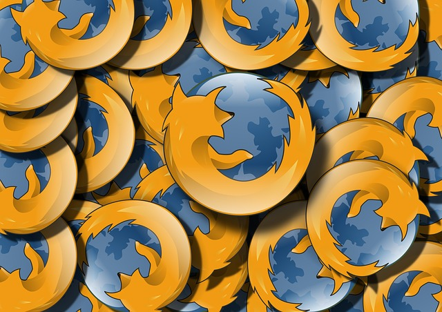Ohnivá liška s diskem komunikuje až příliš často (Zdroj: Pixabay.com)