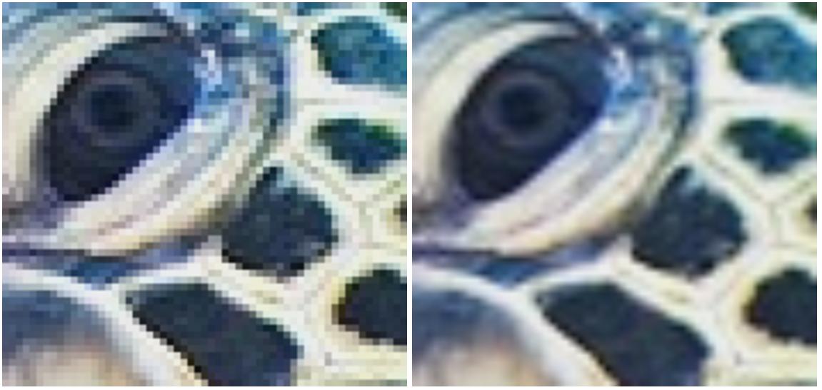 Originál v nízkém rozlišení (vlevo) a bikubicky převzorkovaný (vpravo)