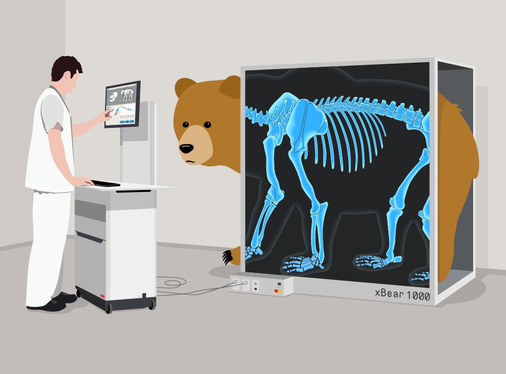 Experti z Cure53 koukli důkladně VPN medvídkovi TunnelBear pod kůži