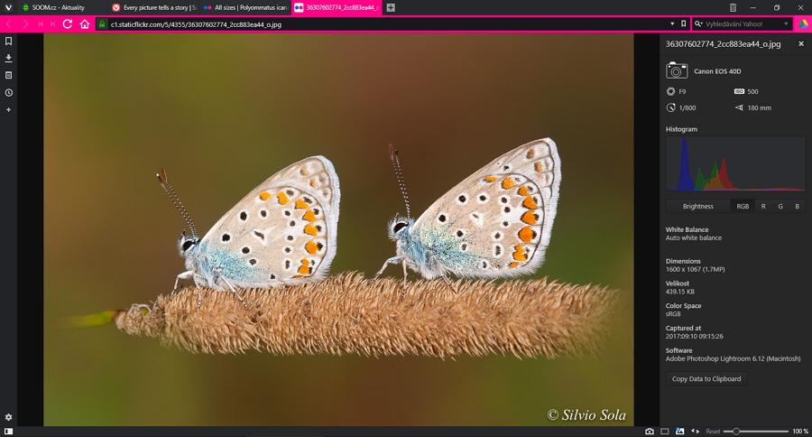 Inspektor obrázků zobrazí všechny parametry a dostupná metadata