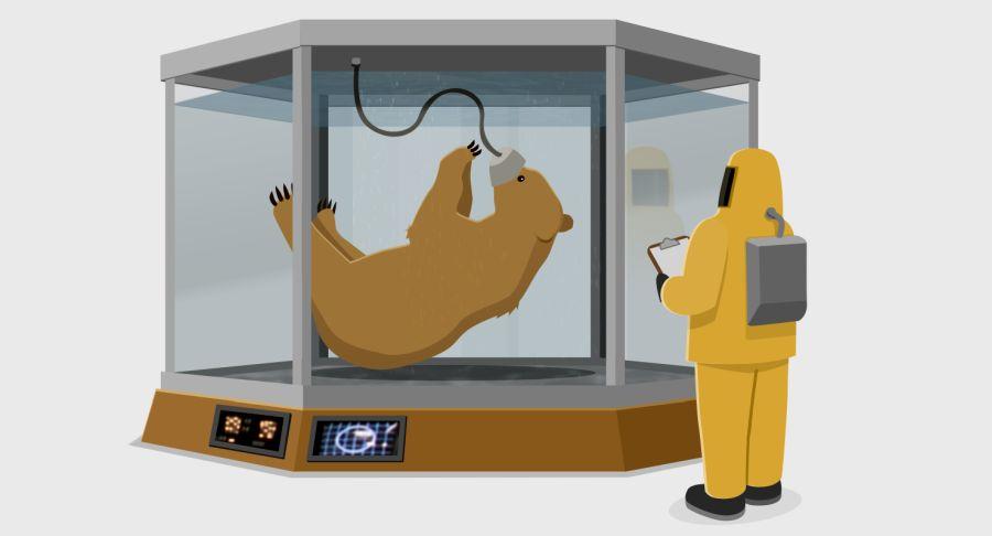 TunnelBear se s pomocí vědců připravuje i na ty nejzapeklitější VPN tunely
