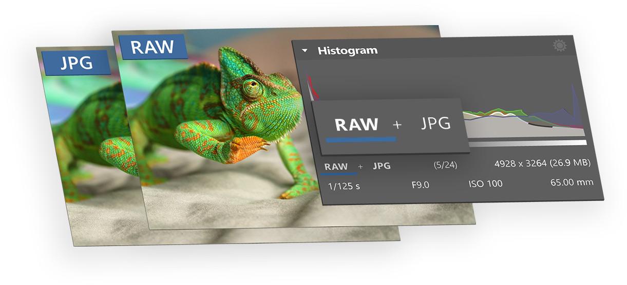 ZPS X: úpravy provedené ve spárovaném JPG je možno rovnou aplikovat na zdrojový RAW (Zdroj: Zoner.cz)