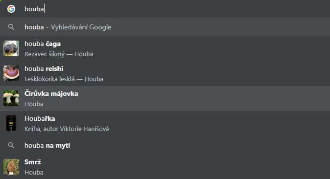 Výsledky našeptávání v Google Chrome při zapnutí rozšířených výsledků nemusí být zrovna užitečné...