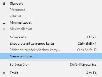 přes pravé myšítko otevřeme kontextové menu na horní ploše okna (mimo ouško panelu) a vybereme položku Name window...