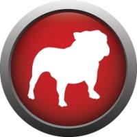 BullGuard Internet Security: precizní buldok zabezpečení