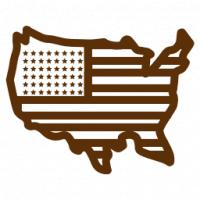 Chceš do USA? Ukaž sociální sítě a emaily