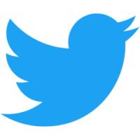 Jak vyhledávat na Twitteru?