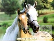 The Horses World Screensaver