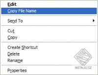 Copy File Name