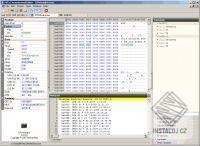 Hexadecimal Editor
