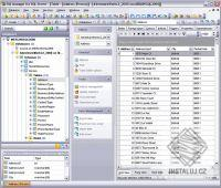 EMS MS SQL Manager