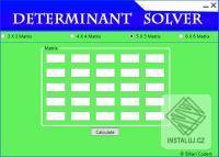 Determinant Solver