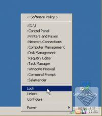 Software Policy