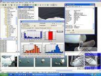 Wega2 Imageviewer
