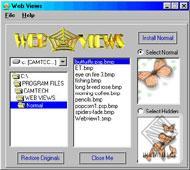 Web Views
