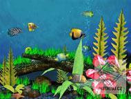 Aquarium 3D Screensaver