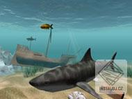 Shark Water World 3D Screensaver