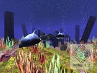 3D Wild Dolphin Screensaver